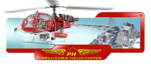 Pellissier Helicopters